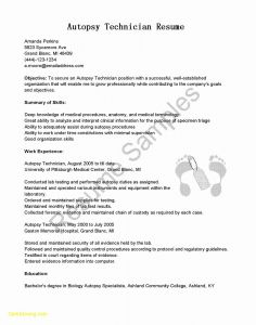Teacher Resume Template Free Download - Resume Template Microsoft Word Awesome Resume In Microsoft Word New