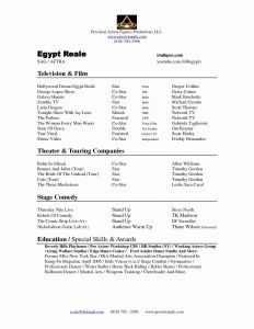 Technical theatre Resume Template - Awesome Culinary Arts Resume Template
