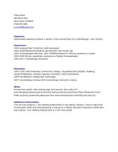 Technician Resume Template - 49 Inspirational Information Technology Resume