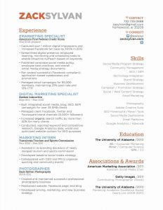 University Of Alabama Resume Template - Seo Expert Resume Paragraphrewriter