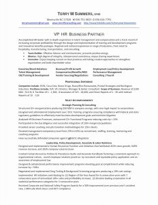 Vp Resume Template - Executive Resume Template Doc Example Resume Template C Unique
