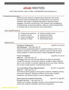 Waitress Resume Template - Professional Teacher Resume Paragraphrewriter