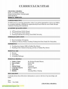 Web Developer Resume Template Doc - Resume Template Doc New Graduation Certificate Template Resume