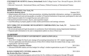Wso Resume Template - Wall Street Oasis Resume Review Essay Online the University Of