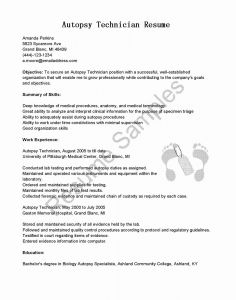 Yale Resume Template - 35 Good Sample Resume Templates Sierra