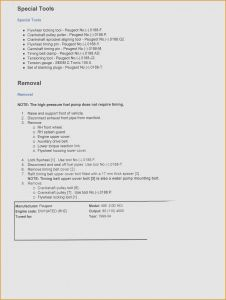 Youth Minister Resume Template - Youth Ministry Resume Template social Worker Resume Sample Templates