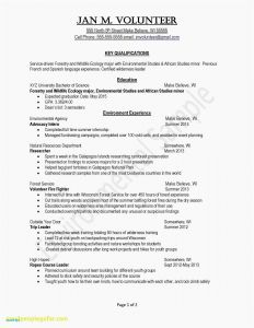 Youth Minister Resume Template - Youth Ministry Resume Examples Unique New Resume Sample Best Resume
