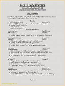 Youth Ministry Resume Template - Fresh Great Resume Templates Fr